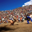 "Wrestling Match,Himachal Pradesh<br />Two men wrestle during a festival in Himachal Pradesh, which means ""region of snowy mountains."" This resort area in the foothills of the Himalaya is an Indian favorite."